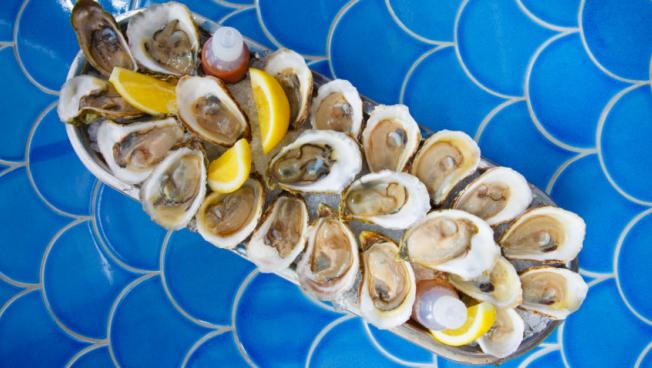 Oyster Bucket from Boston's Back Bay Restaurant Porto