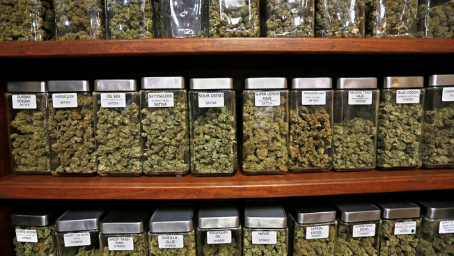 At Final Marijuana Hearing, Mass. Lawmakers Contemplate Taxes, Role Of Drug Offenders