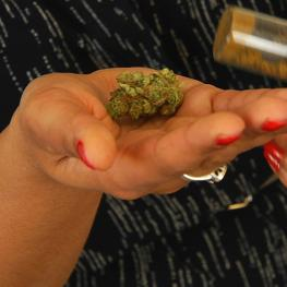 It's now legal to grow and use marijuana at home in Massachusetts, but retail sales are still more than a year away.