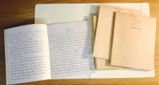 Healey's diaries