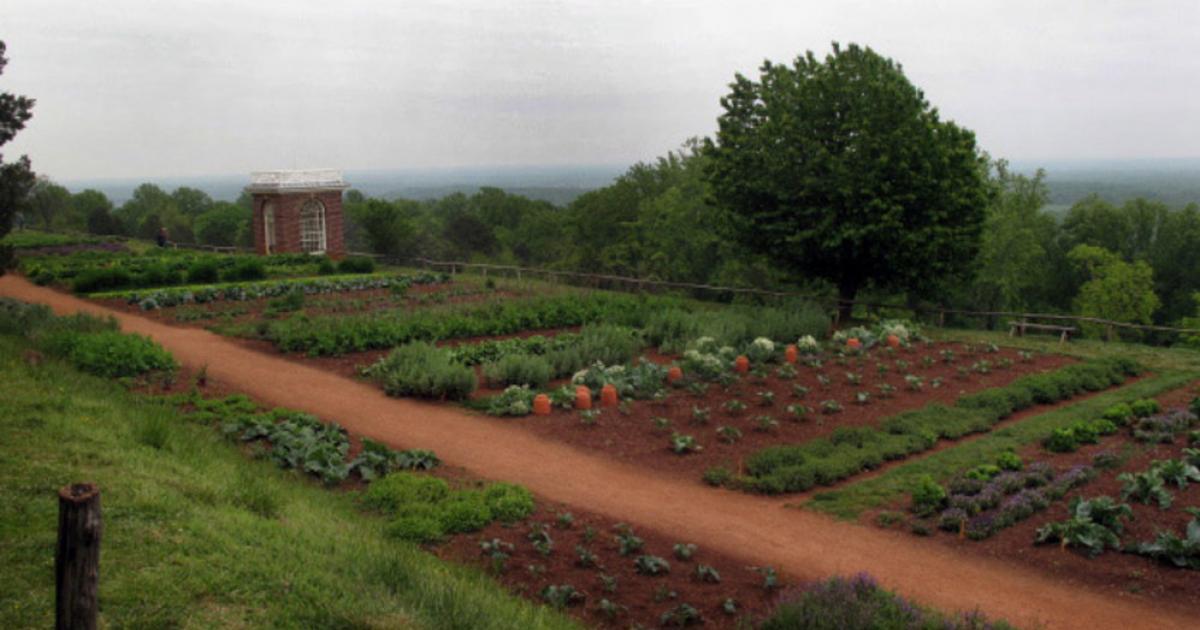 Jefferson's Vegetable Garden Still Grows at Monticello ...  |Thomas Jefferson Garden Seeds