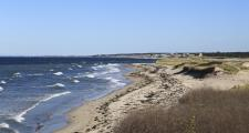 How long will one beach in Sandwich, MA last? How long will the Cape last?