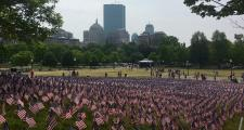 37,000 US Flags placed on the  Boston Common for Memorial Day